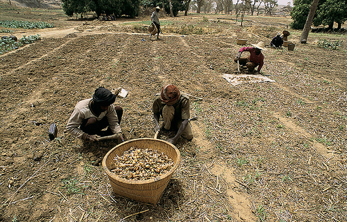 Poverty and Development in Africa