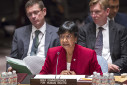 Pillay_in_Security_Council